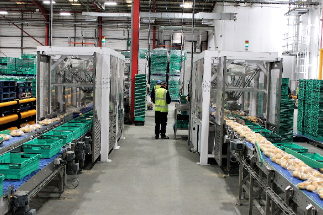 Brillopak provided an automated solution that improves product handling, minimises waste and enhances the presentation of pre-packed potatoes